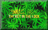 Cannabis Rising: The Key in the Lock